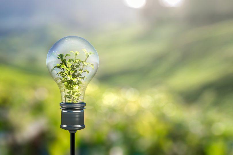 Día Nacional de la Energía: la transición energética como oportunidad de desarrollo sostenible